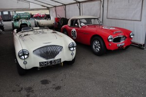 Healey 100/4 and 3000 race cars